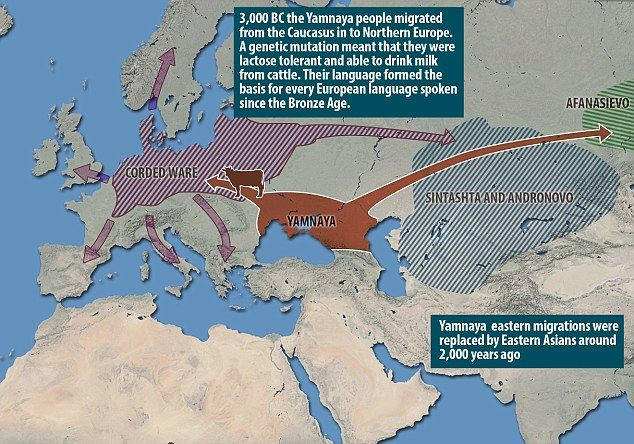 3000 bc migration World population since creation by lambert dolphin had you entered any village on earth in around 3,000 bc, the first person you would have met would probably have been your ancestor the main weakness in the models comes from migration.